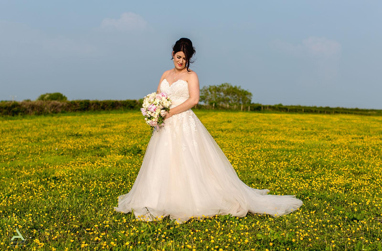Gower Wedding Photographer Swansea