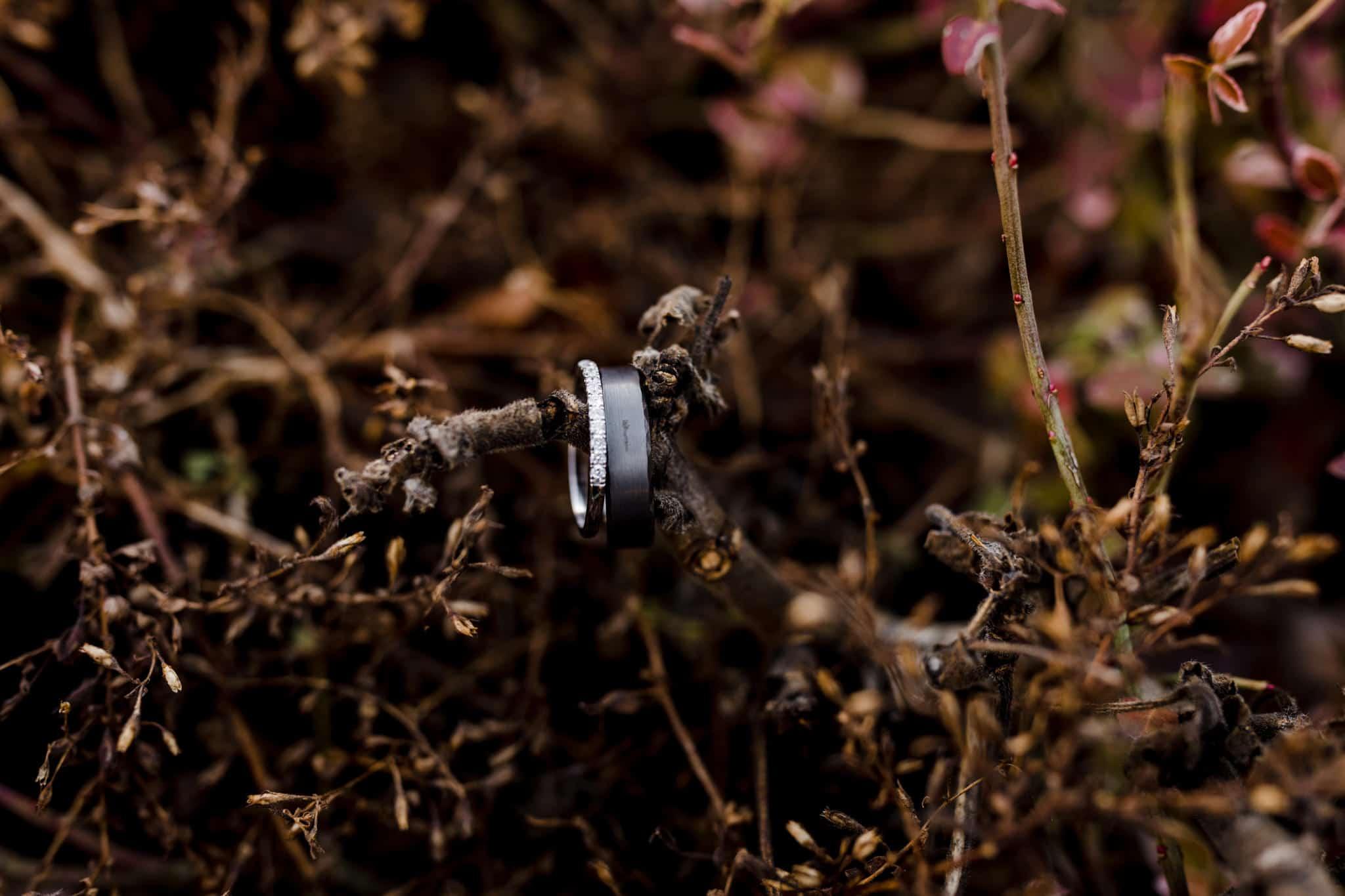 Rosedew Farm wedding Photography-23- Art by Design