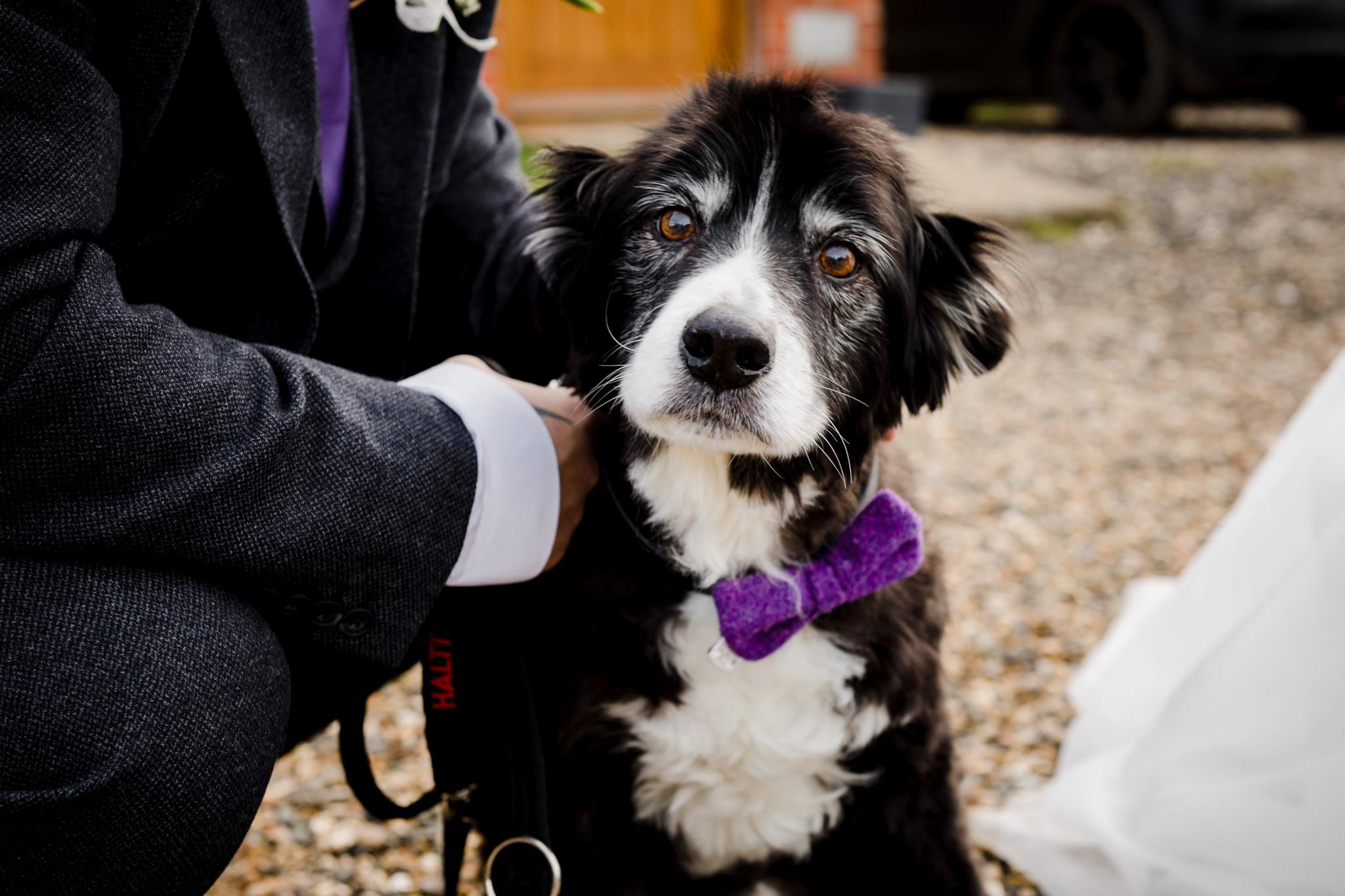 Rosedew Farm wedding Photography-59-Art by Design